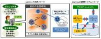 図1●iVaccineの利用イメージと仮想システムイメージ